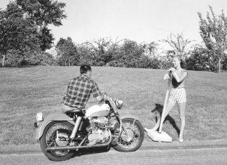 Legenda: Harley-Davidson Sportster